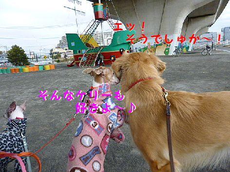 f_20120124080132.jpg