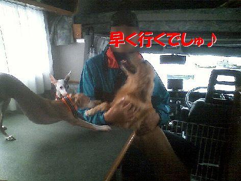 g_20111120093804.jpg