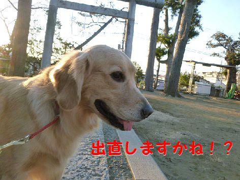 g_20120114080635.jpg