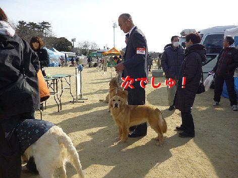 h_20120116071241.jpg