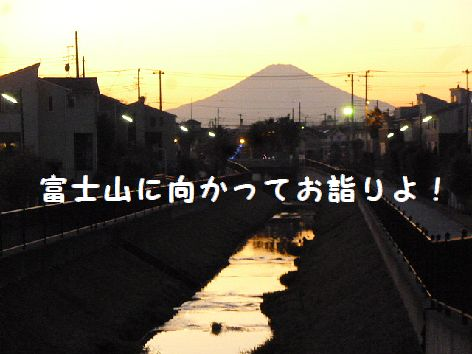 i_20120114080634.jpg