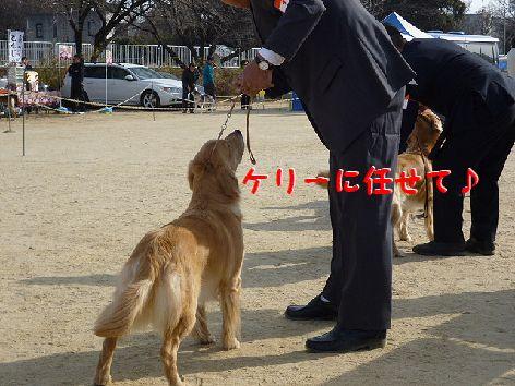 i_20120116071241.jpg