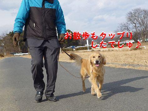 i_20120118063021.jpg