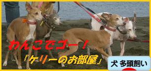 itabana2_20111129092911.png