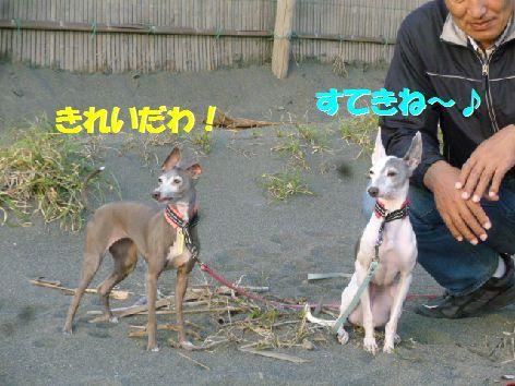 j_20111102070702.jpg