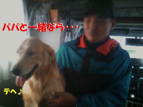 j_20111120093803.jpg