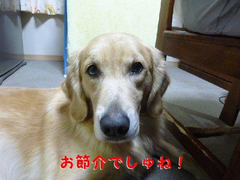 j_20111203104347.jpg