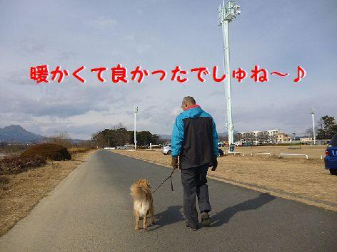 j_20120118063021.jpg