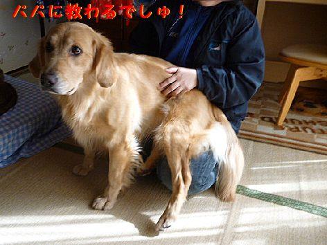 j_20120131071455.jpg