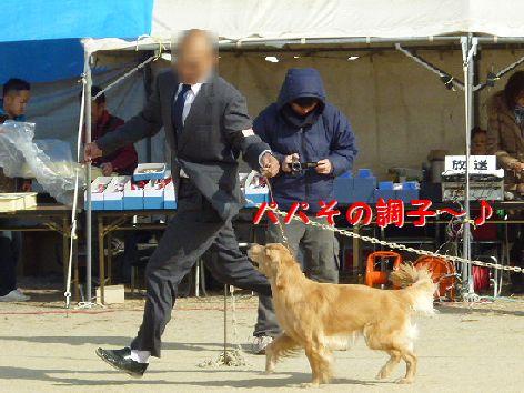 k_20120116071240.jpg