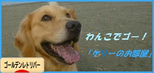 kebana_20111129092900.png