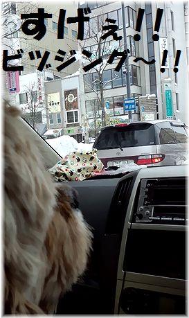 26日コニービヅジング~
