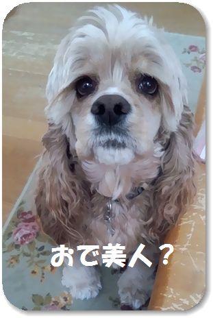 10日コニー編集