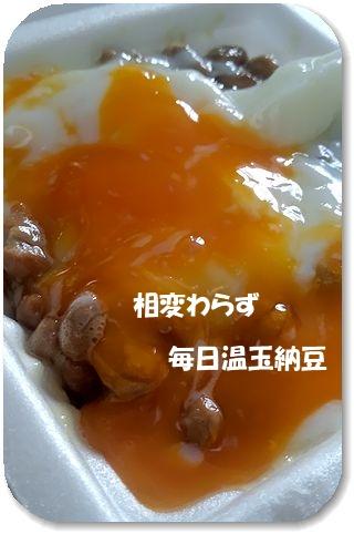 12日納豆編集