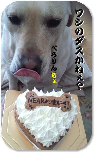 14日もちゃ。ケーキ編集