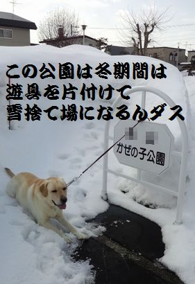 8日かぜのこ公園ダス編集