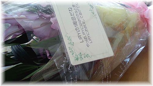 12日リリィの花綺麗