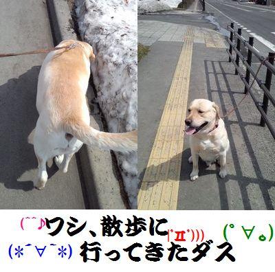 22もちお散歩編集