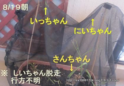 IMG_5442-1.jpg