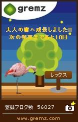 20111113グリムス大人の木