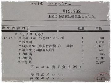 DSCF7808s.jpg