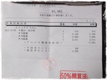 DSCF7909s.jpg
