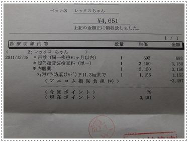 DSCF8222s.jpg