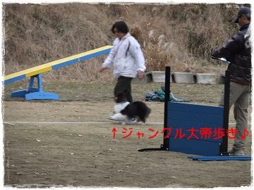 DSCF8257s.jpg