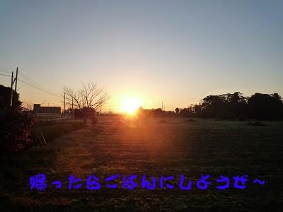 P1020648s.jpg