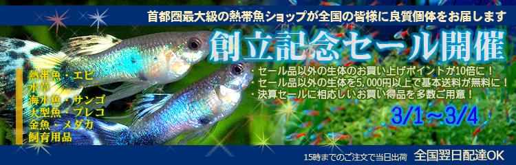 online_new_banner6.jpg