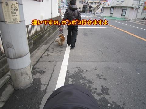 20120311_4.jpg