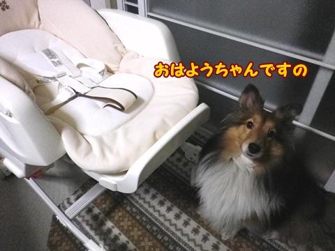 20120317_1.jpg