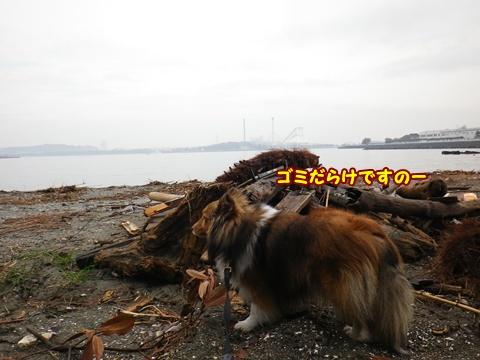 20120318_1_8.jpg