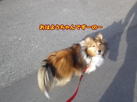 20120330_1.jpg