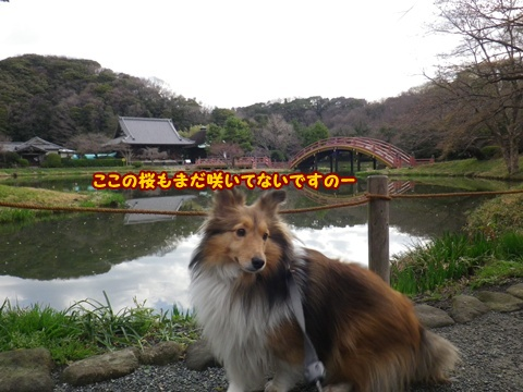 20120401_1_2.jpg