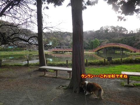 20120401_1_3.jpg