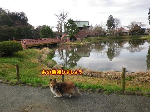 20120401_1_5.jpg