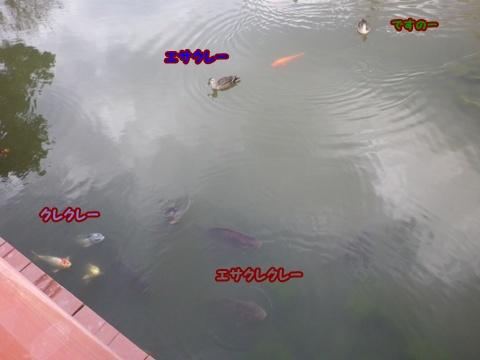 20120401_1_6.jpg