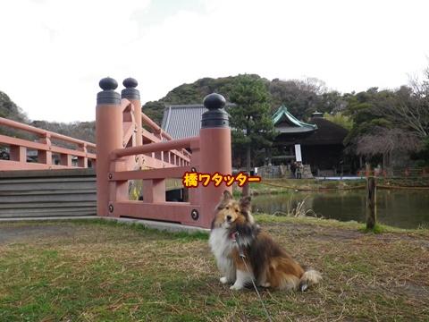 20120401_1_7.jpg