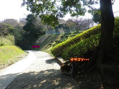 20120408_11.jpg