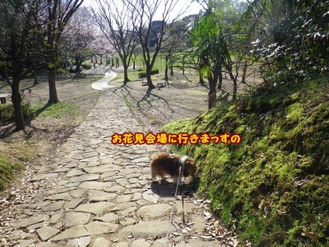 20120408_1_2.jpg