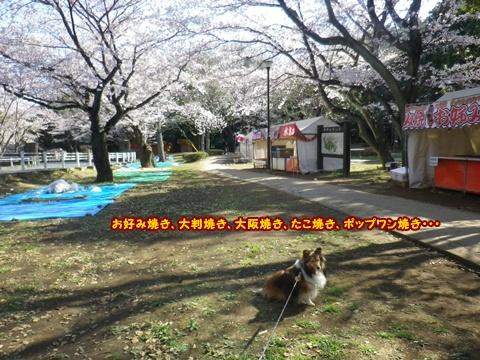 20120408_1_6.jpg