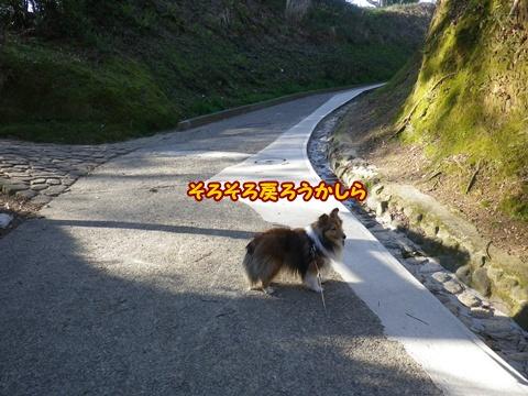 20120408_3.jpg