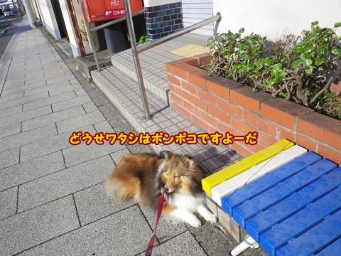20120415_4.jpg