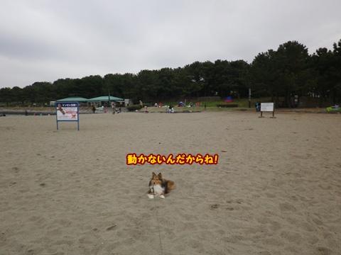 20120422_11.jpg