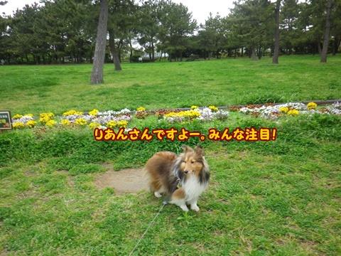 20120422_1_1.jpg