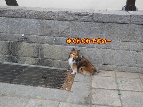 20120422_1_2.jpg