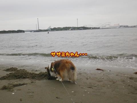 20120422_1_5.jpg