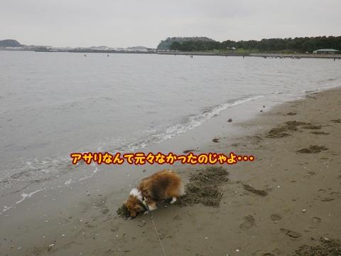 20120422_1_6.jpg