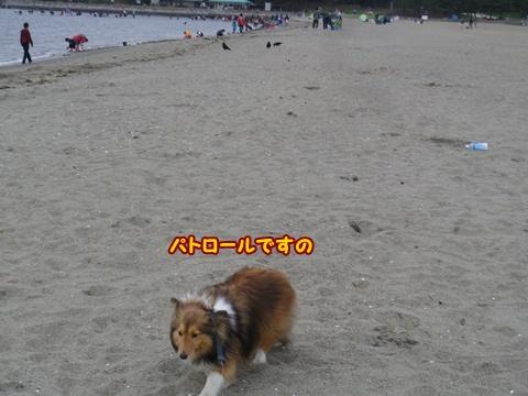 20120422_1_8.jpg